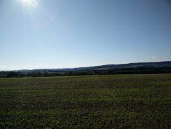 Ehrbachklamm: Blick über die Oppenhausener Felder