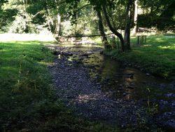 Ehrbachklamm: Die Ehrbach mit etwas Wasser