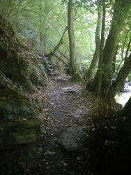 Ehrbachklamm: Die erste Aufstiegshilfe