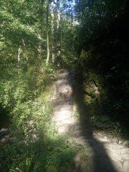 Ehrbachklamm: Weg im Stein