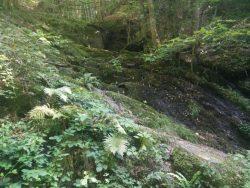 Ehrbachklamm: Das Wasser schlängelt sich