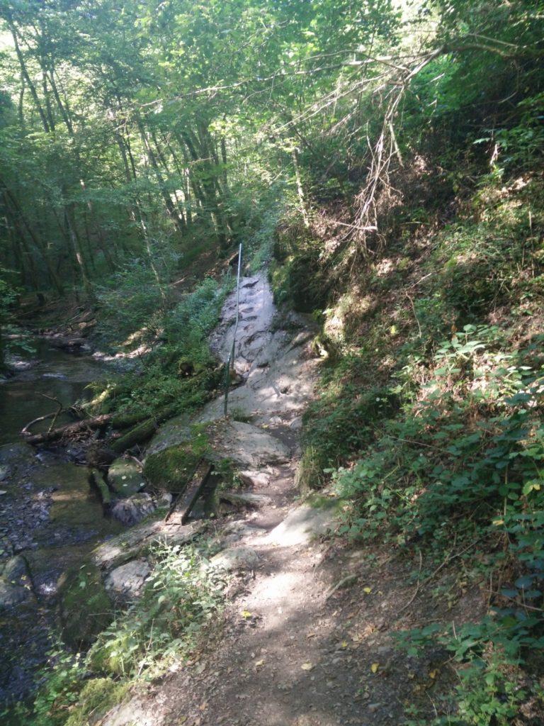 Ehrbachklamm: Über Stock und Stein