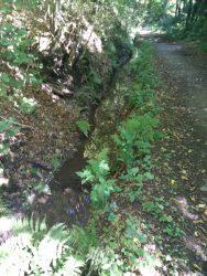 Ehrbachklamm: Der alte Mühlgraben