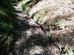 Ehrbachklamm: Wasserrinnen beidseitig