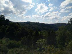 Ehrbachklamm: Schloss Schöneck und Landschaft