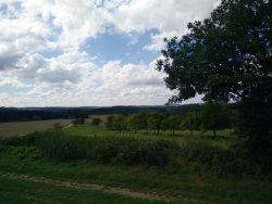 Ehrbachklamm: Felder, Wiesen und Wald