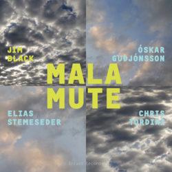 Jim Black, Malamute (Cover)